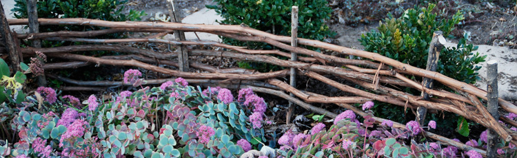MGMV09_Creating_a_Wattle_Fence.jpg