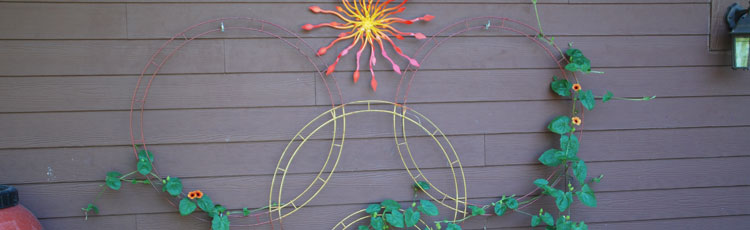 081619_Recycled_Items_Dress_up_Garden_Fence_or_Wall-THUMB.jpg