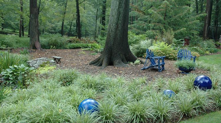 Yard Landscaping Around Trees