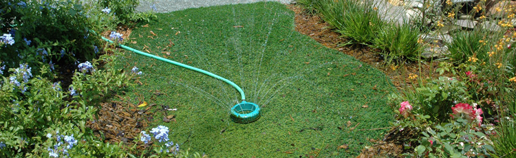 WATERING-YOUR-LAWN-AND-GARDEN.jpg
