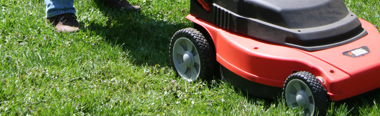 MGMV08_Mow_Your_Way_to_a_Healthy_Lawn.jpg