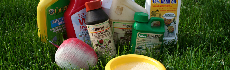 2013_480_MGM_Spring_Clean_Up_Proper_Disposal_of_Pesticides.jpg
