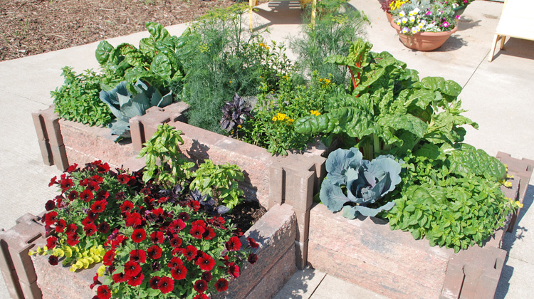 Using-Railroad-Ties-to-Create-Raised-Bed.jpg